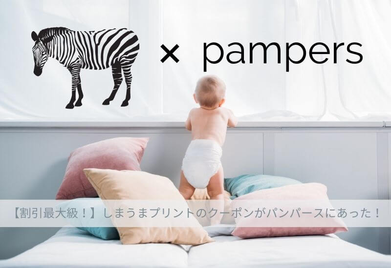 shimauma-print-coupon-pampers